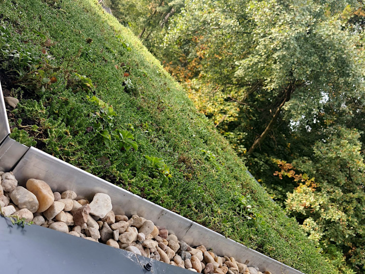 GREENFOND POLSKA SPÓŁKA Z OGRANICZONĄ ODPOWIEDZIAL Balcon, Veranda & Terrasse modernes Vert