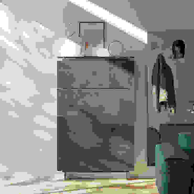 Hosoi 4 door resin shoe storage cabinet by Birex My Italian Living Corridor, hallway & stairsStorage