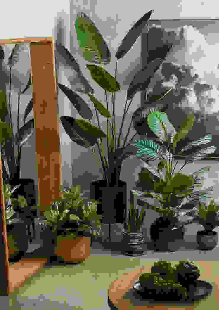 Indoor Artificial Potted Plants Sunwing Industries Ltd Espaces commerciaux modernes Plastique Vert
