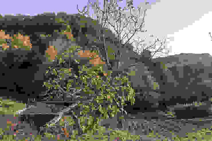 PROPERTY TALES Casas do campo e fazendas