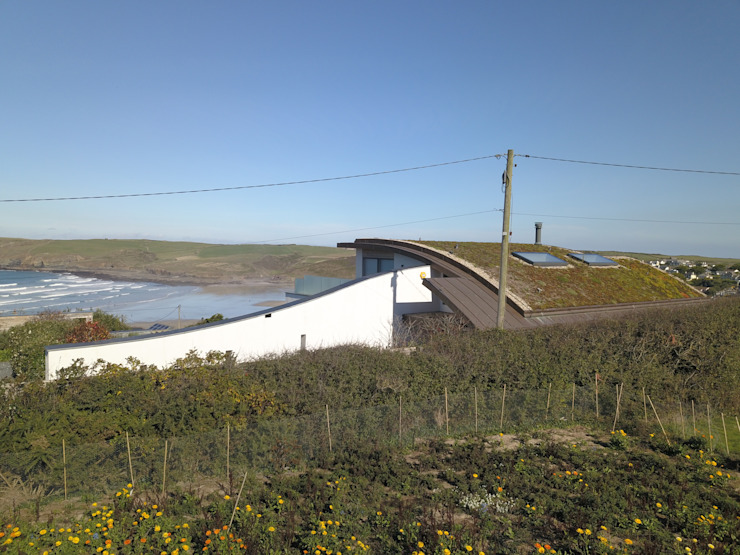 Beachfront property with green roof. Arco2 Architecture Ltd Roof