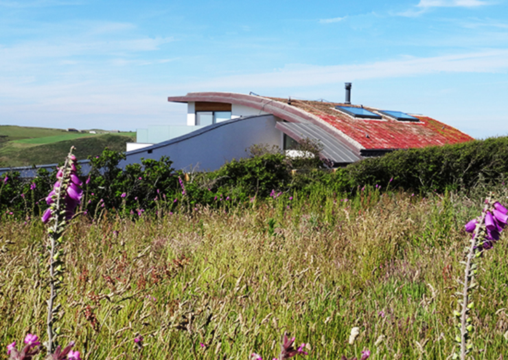 Wild Meadow Garden and Green Curved Roof Arco2 Architecture Ltd Roof