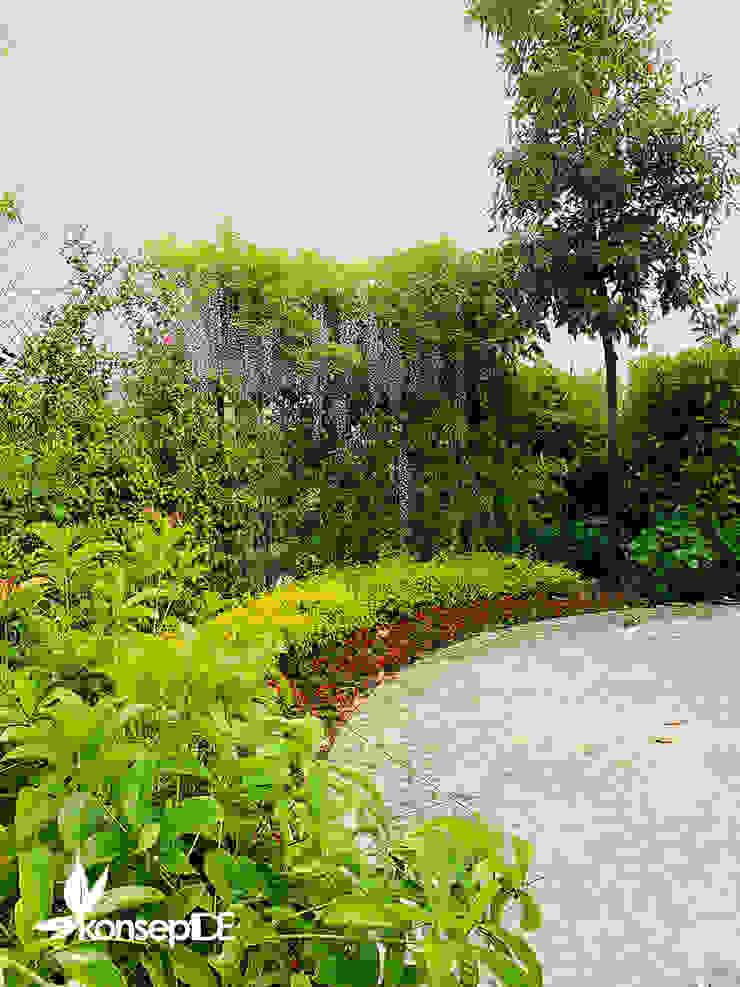 konseptDE FİDANLIK 2020 konseptDE Peyzaj Fidancılık Tic. Ltd. Şti. Modern Bahçe