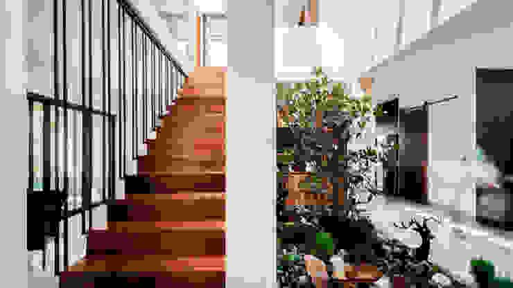 ZAMNA ARQUITECTOS SAS DE CV Stairs Wood White