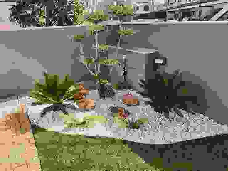 Jardim em casa Particular em Moreira da Maia Viveiros Florido Plantas Jardins rústicos