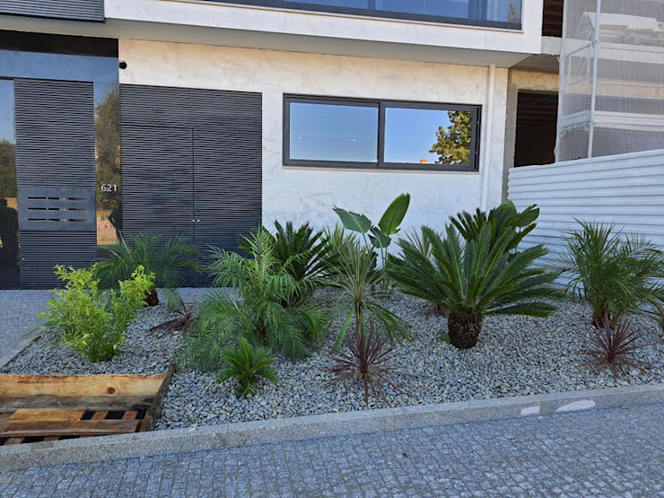 Canteiro Urbanizaçao na Maia Viveiros Florido Plantas Jardins tropicais