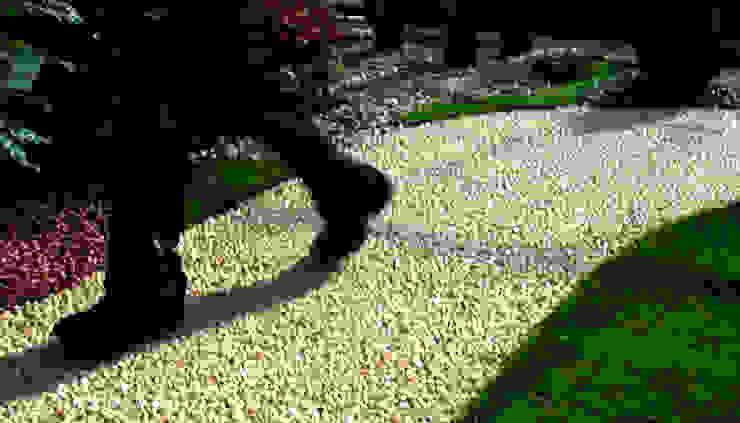 JARDINERIA DEL VALLES Minimalist style garden