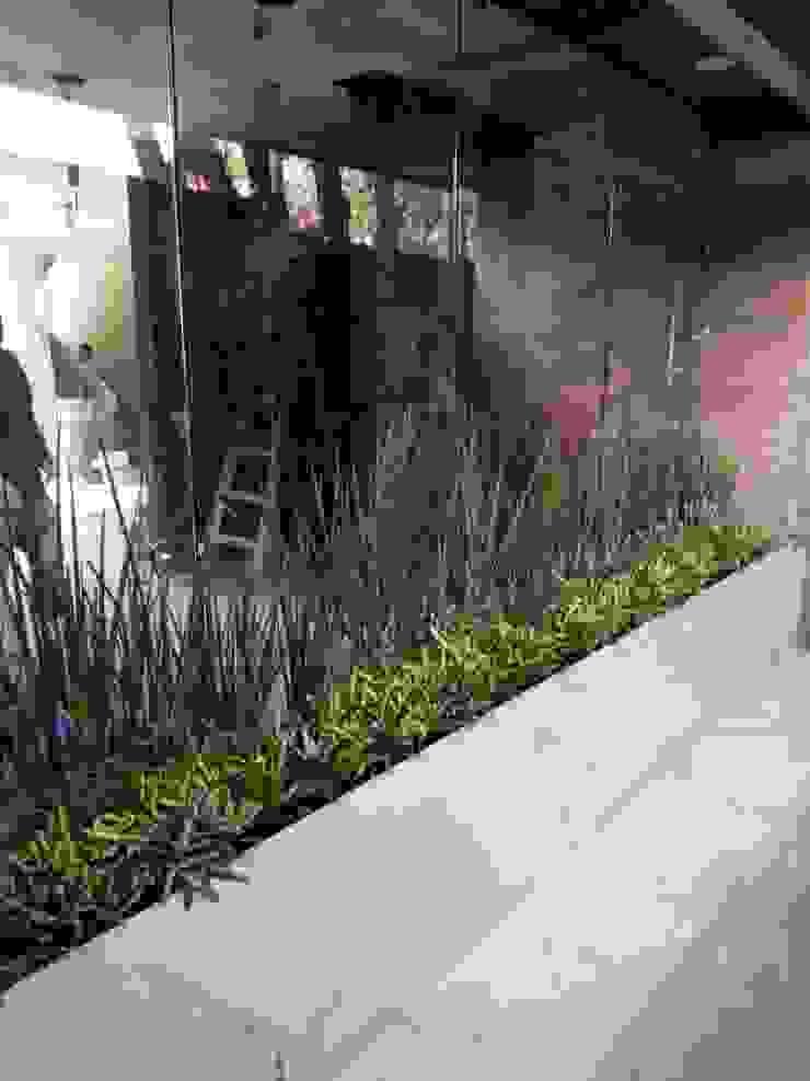 Jardineria bonaterra JardinFleurs & Plantes