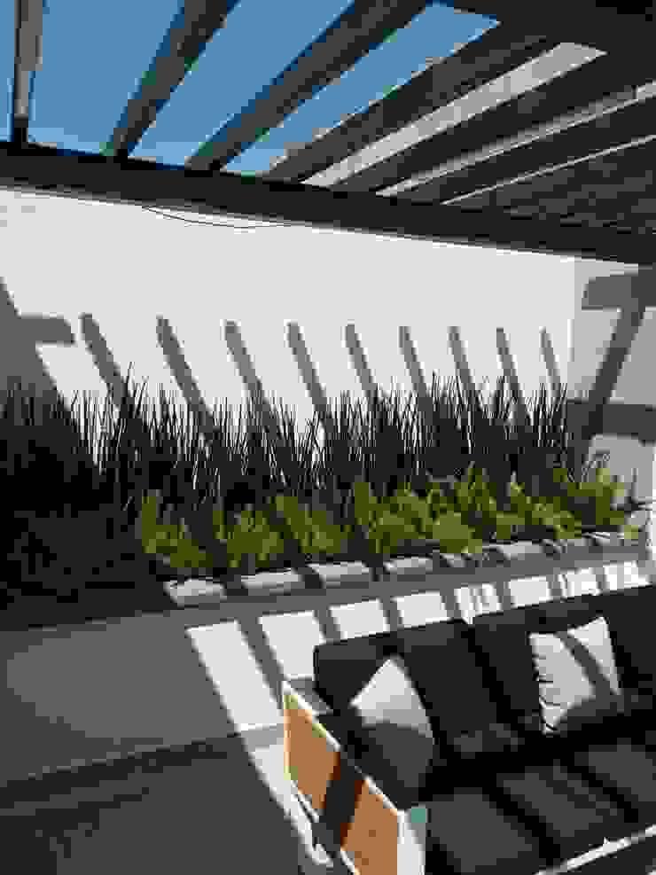Jardineria bonaterra GiardinoPiante & Fiori