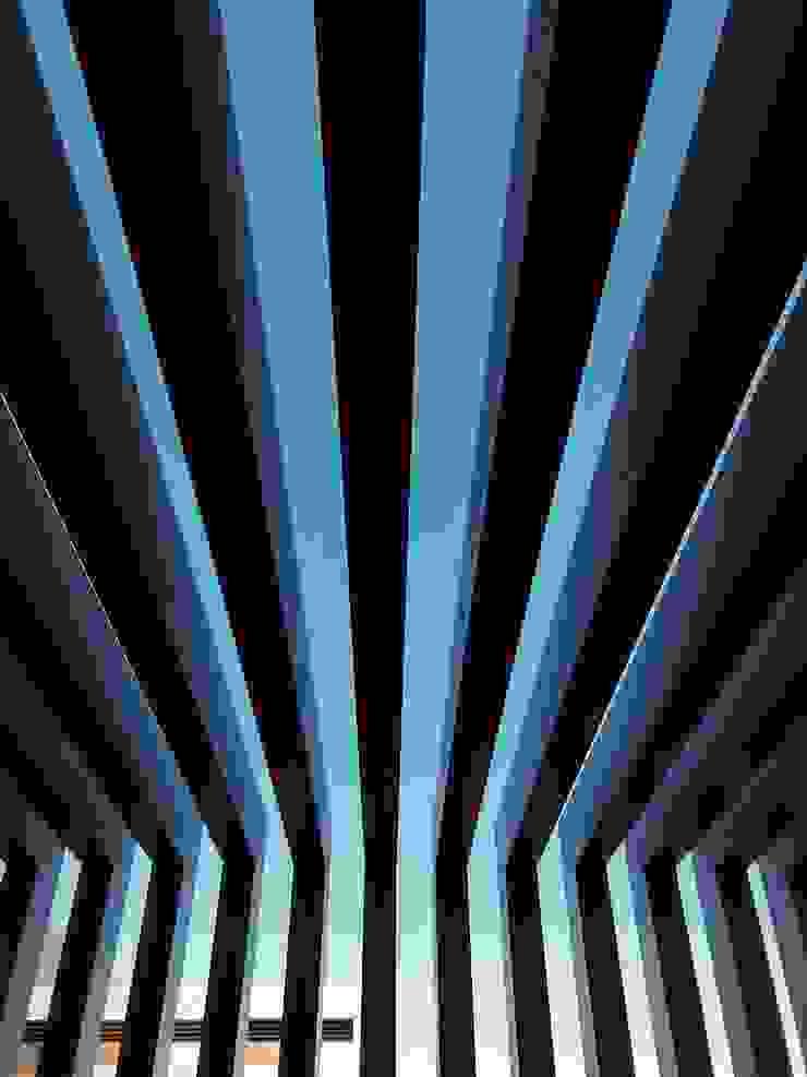 Ana Chernykh Photography Balcone, Veranda & TerrazzoAccessori & Decorazioni
