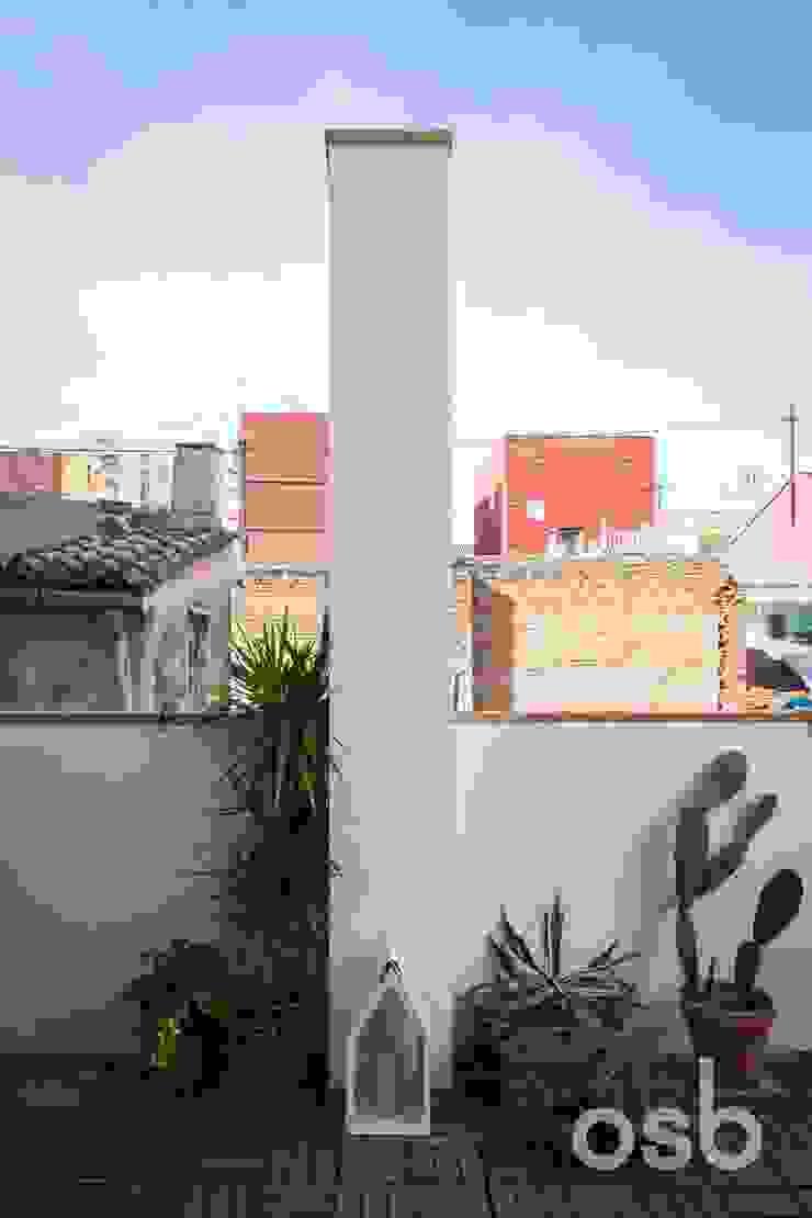 terraza osb arquitectos JardínPlantas y flores Blanco