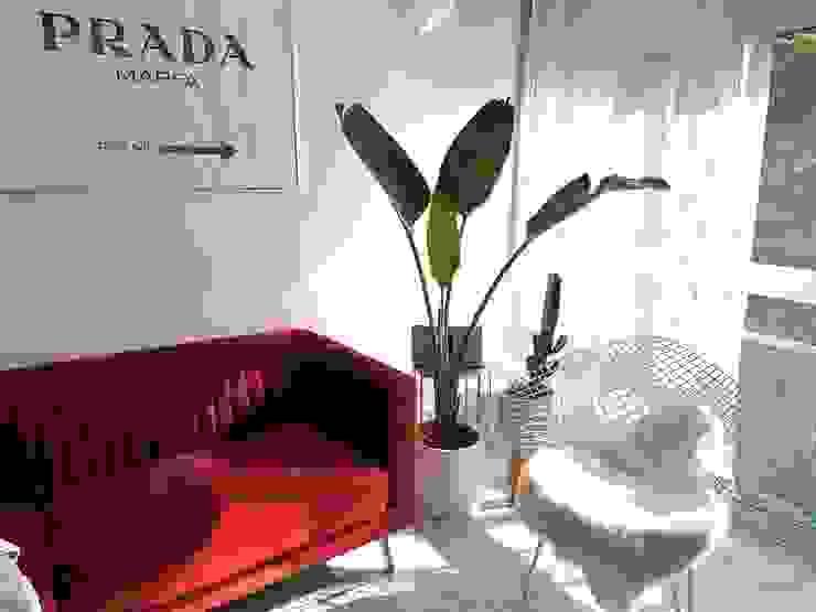 brissi design Living room Marble Red