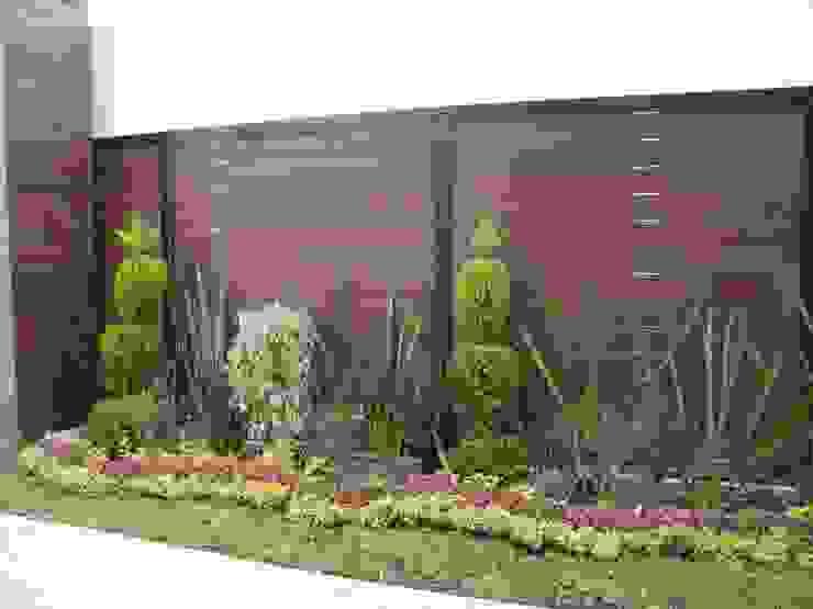 Kiinch Modern Walls and Floors