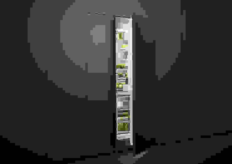 Fisher & Paykel Built-in luxury column fridge Fisher Paykel Appliances Ltd Built-in kitchens