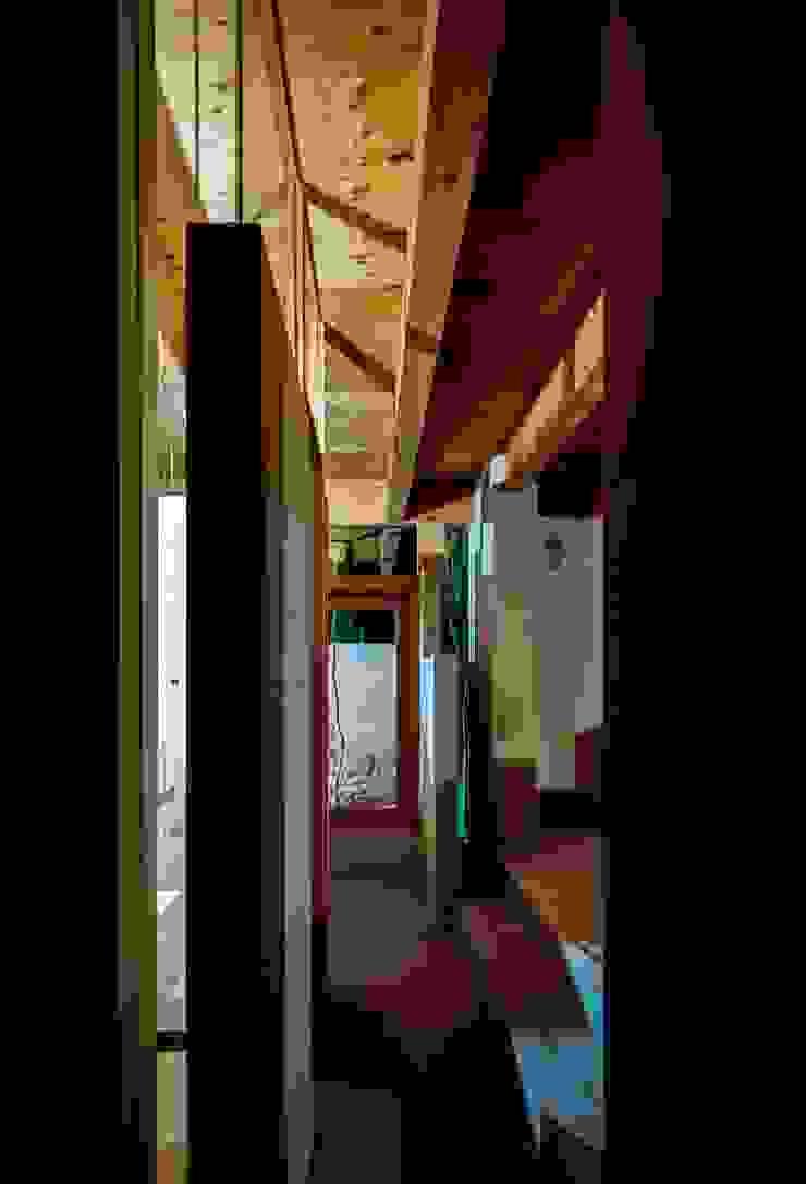 藤原・室 建築設計事務所 Modern corridor, hallway & stairs Plywood Wood effect