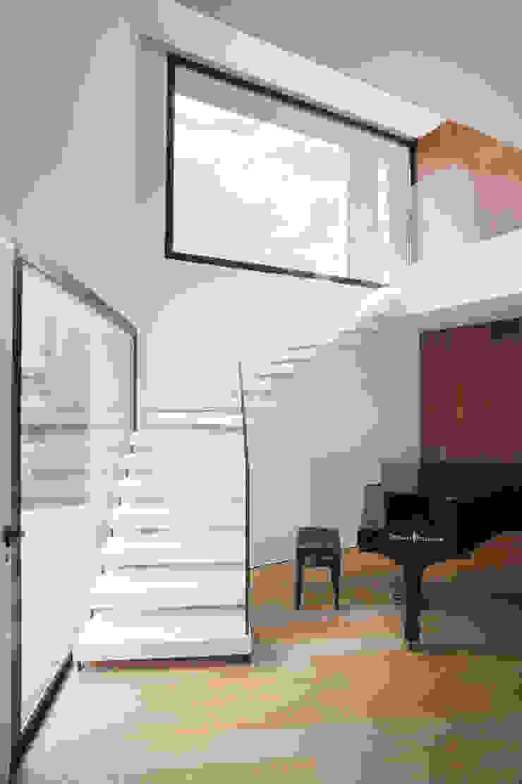 CP Parquet Stairs Wood