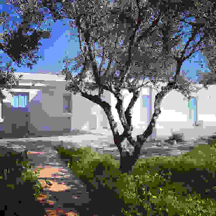 Progettazione villa e guesthouse tra gli ulivi_PAros_Cicladi_GREECE studio patrocchi