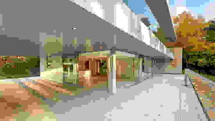 Oseleta, Luscombe, Luscombe Valley, Poole, Dorset David James Architects & Partners Ltd Maisons modernes