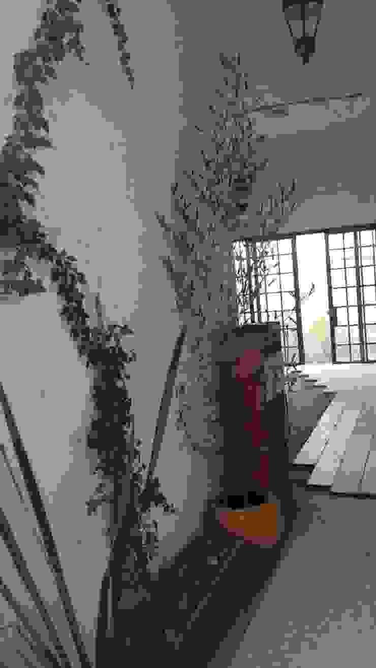 Colocación de piso Quick BEE Pasillos, vestíbulos y escaleras de estilo moderno