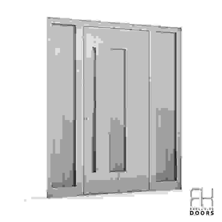 RK Exclusive Doors Дверi Алюміній / цинк Білий