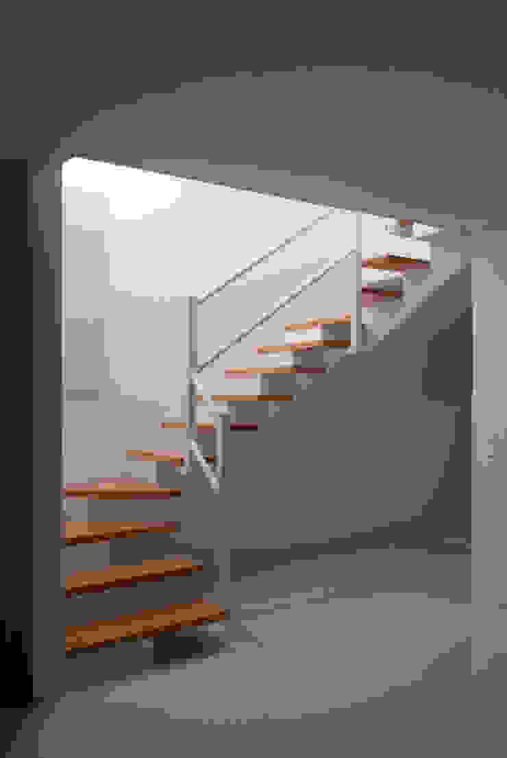 OPA Architetti Merdivenler Ahşap Beyaz