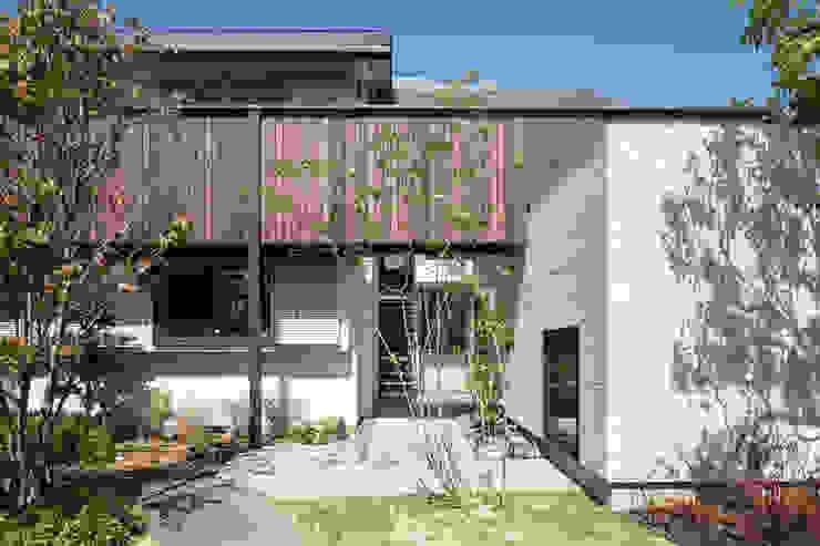 白いスタッコ壁の家 田中郁恵設計室 二世帯住宅 木 白色