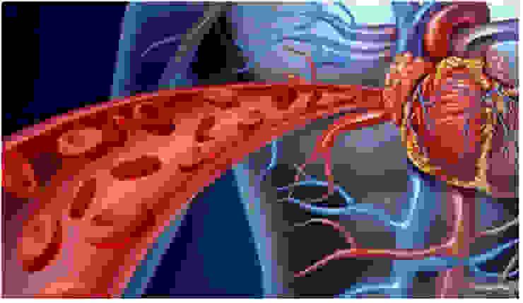 WHERE TO BUY BLOOD BALANCE FORMULA? Blood Balance Formula