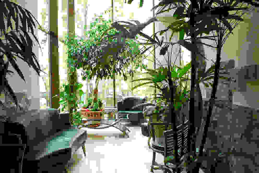 Jardines de invierno modernos de Армен Мелконян Moderno