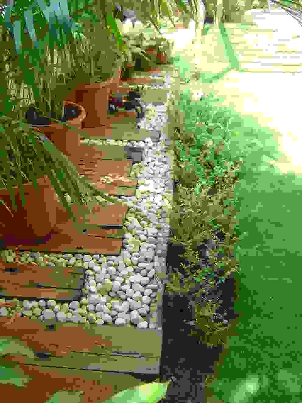 Potted plants Land Design landscape architects Tropical style garden
