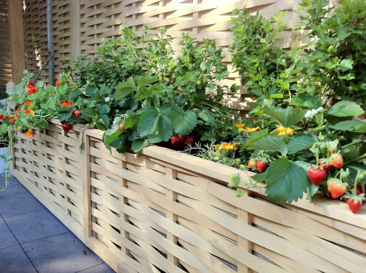 15 jardineras geniales para patios grandes y pequeños