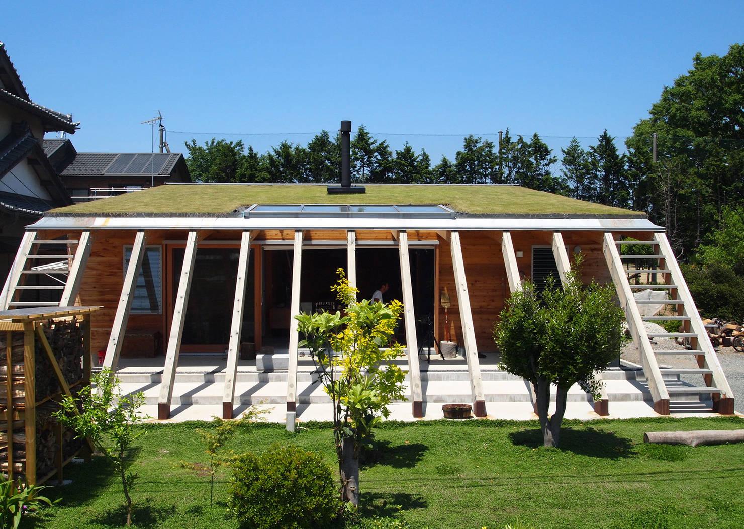 지붕 위의 정원 - 일본의 매트 하우스
