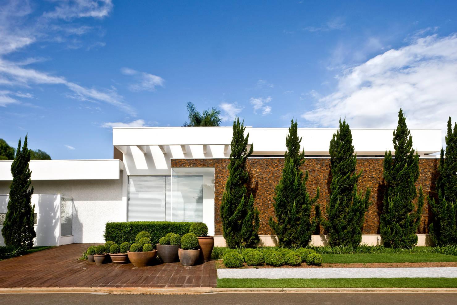 21 árvores de pequeno porte para a calçada ou o jardim