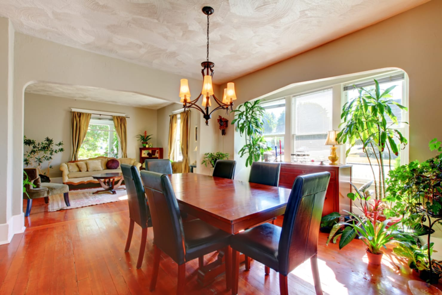 Using plants in your home