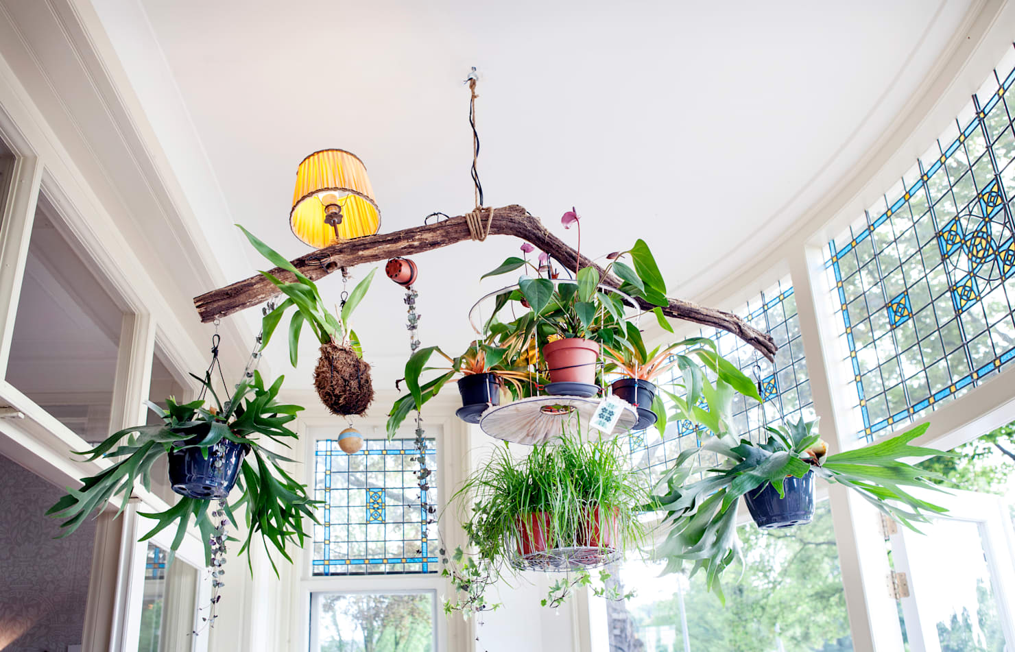 10 ways to style up your indoor garden