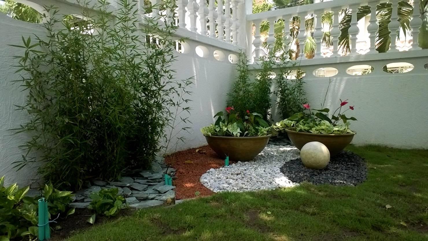 Jardineira em casa: 14 plantas que deixarão o seu jardim fabuloso