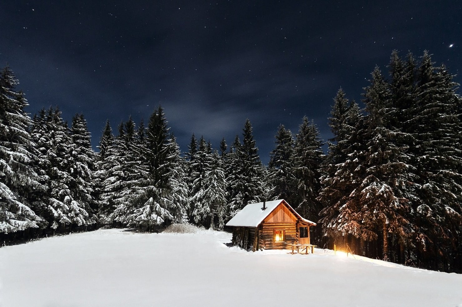 Потрясающий дом посреди леса