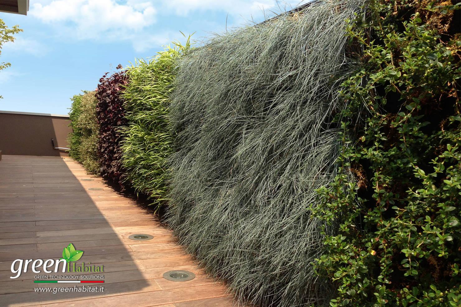 Piante sul Balcone o Terrazzo: 10 Idee da Copiare