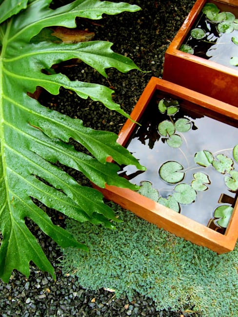 HOATZÍN: Jardines de estilo  de Simbiosi Estudi