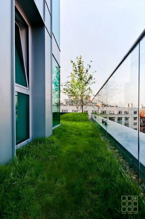 Tерраса в . Автор – Urban Roof Gardens