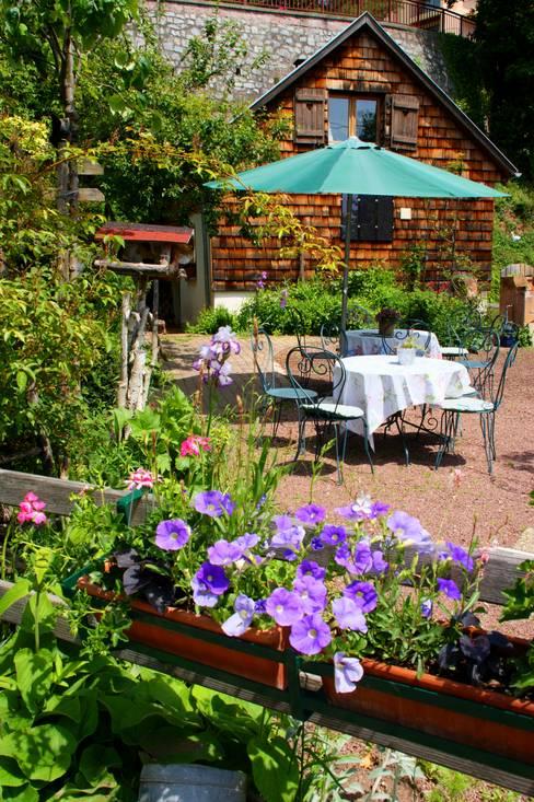 Garden by villa rosa