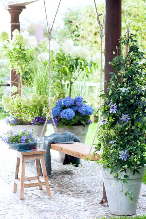Pflanzenfreude.deが手掛けた庭