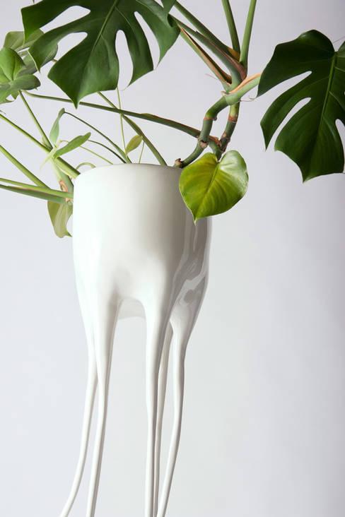 Monstera Magnifica detail:  Binnenbeplanting door Tim van de Weerd