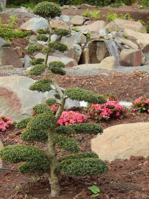 Garden by jwgartendesign