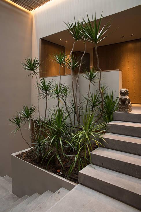 Ezequiel Farcaが手掛けた廊下 & 玄関