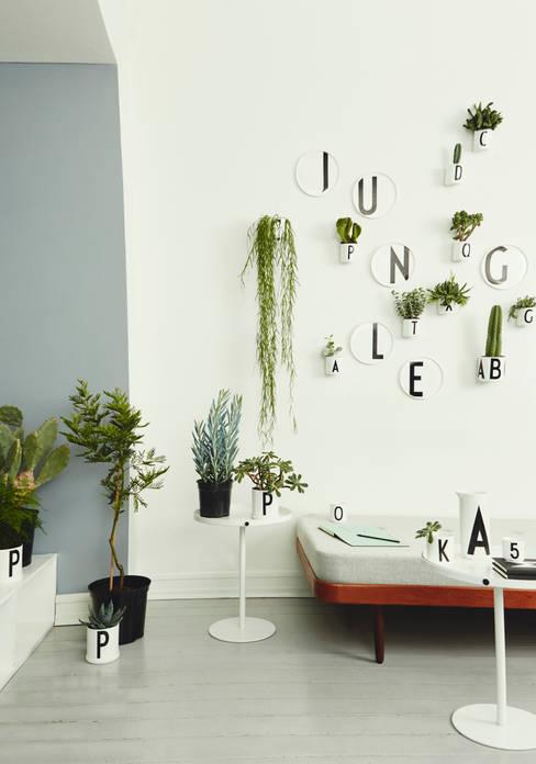 Voor de Urban Jungle:  Binnenbeplanting door Kleuroptafel