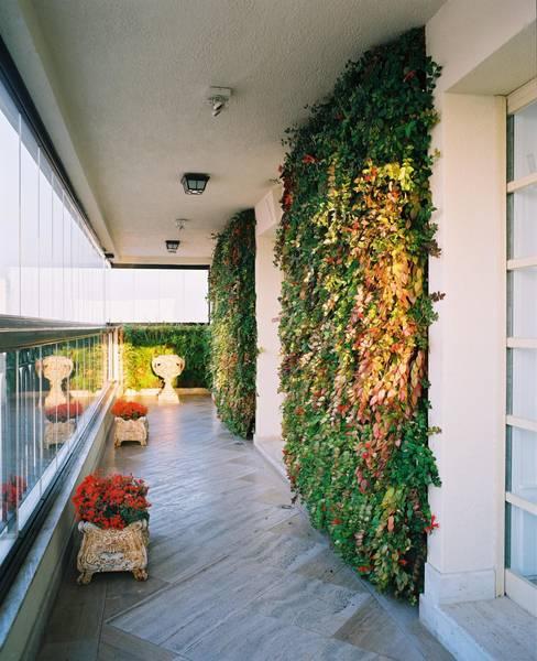 ระเบียง, นอกชาน by Quadro Vivo Urban Garden Roof & Vertical
