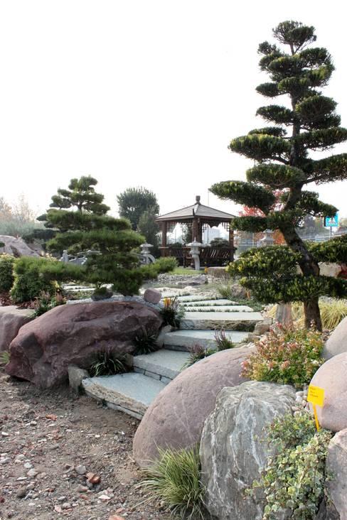 Projekty,  Ogród zaprojektowane przez Azienda agricola Vivai Romeo