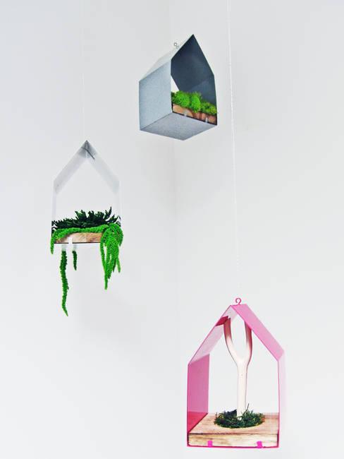 Suspension végétale: Paysagisme d'intérieur de style  par Adventive