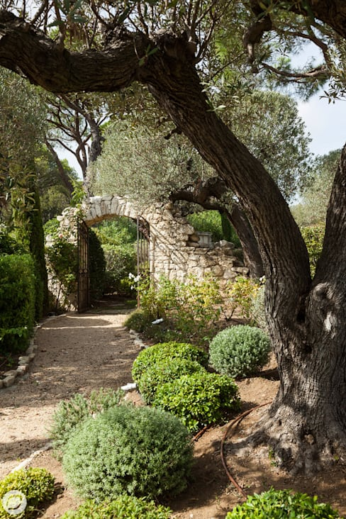 Garden by PASSAGE CITRON