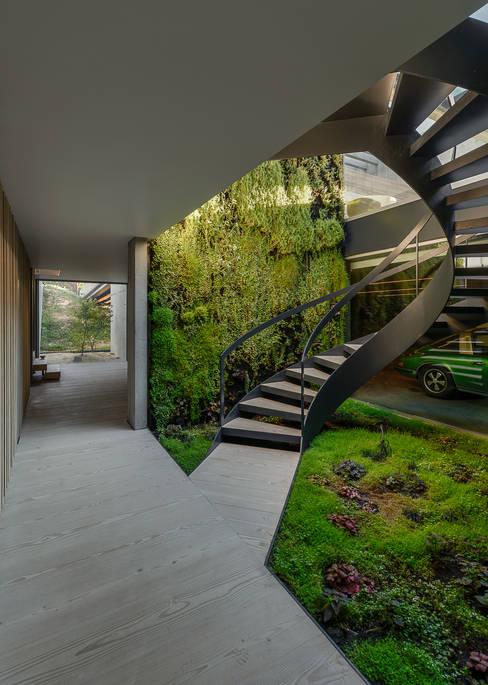 Corridor & hallway by guedes cruz arquitectos